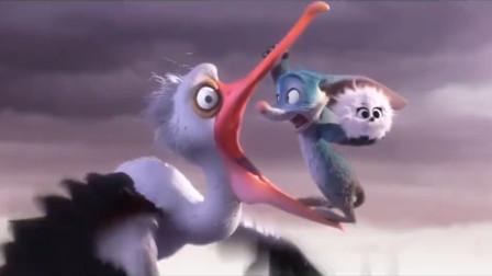 小兔子保护小鸟?全新的冒险故事刺激非凡,奥斯卡最佳动画短片