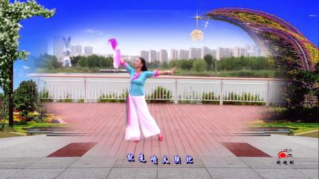 晓晓喜欢广场舞《这么好个地方》个人展示编舞花与影