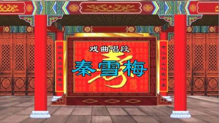 """豫剧《秦雪梅》选段""""秦雪梅在灵前悲声大放"""" 唐河戏友反串演唱"""