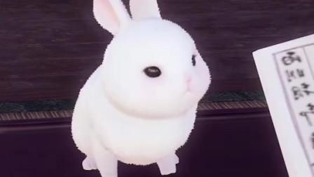 小白兔与大灰狼,大灰狼:又被女儿坑了