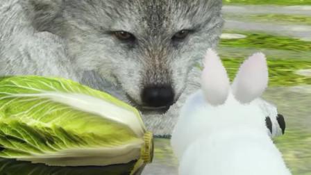 小白兔与大灰狼,大灰狼:我不爱吃兔子