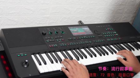 恰似你的温柔 美得理A2000电子琴随手试弹