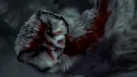 猫头鹰王国:猫头鹰跟同伴逃出生天,可是体力却没有了,怎么办?