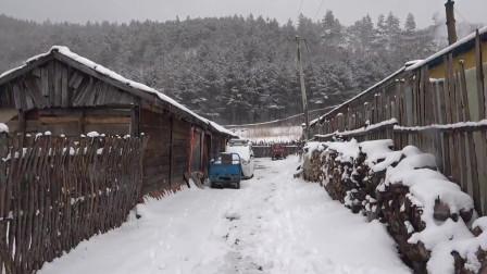 四月大雪纷飞,黑龙江林口县降下大雪,冬天又来了