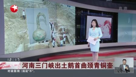 视频|河南三门峡出土鹅首曲颈青铜壶