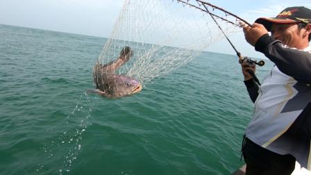 岛民阿杰玩海钓 阿杰今天去钓大米鱼,看朋友上一条20斤左右的米鱼,阿杰能钓到吗