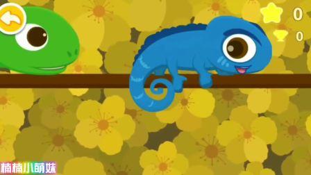 宝宝巴士之欢乐动物园啄木鸟吃害虫