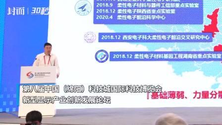 30秒 西北工业大学教授秦天石: 柔性电子成为全球科学前沿和研究热点