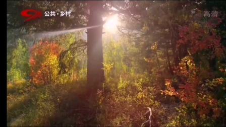 四川广播电视台公共·乡村频道《二十四节气——秋分》宣传片(30秒)