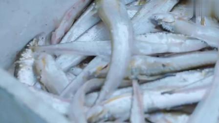 味道中国:寒冷的初春时节,渔民迎浪出海,深入外海捕鱼!