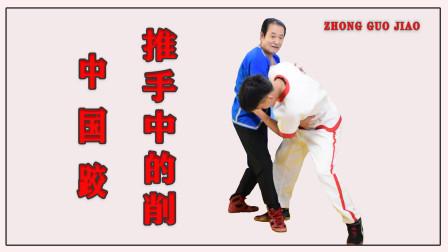 刘清海老师讲述中国跤削,在太极推手中的运用