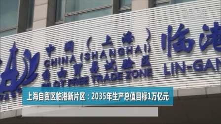 上海自贸区临港新片区: 2035年生产总值目标1万亿元