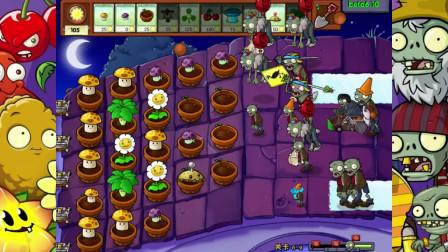 《植物大战僵尸beta版6-2》ex模式,神奇的金盏花