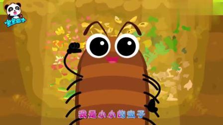 宝宝巴士:垃圾分类湿垃圾分解者看似很弱小的虫子原来这么强