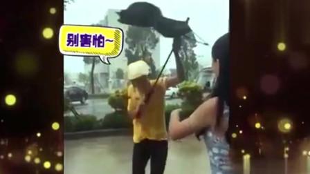 家庭幽默录像:大风天雨伞有它自己的想法,拜拜了人类,我要随风追求自由啦