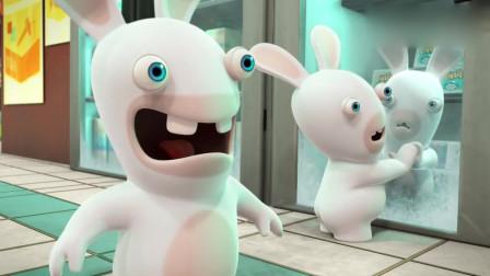 疯狂的兔子:兔子蜜汁喜欢冰箱,前赴后继扑进去,干啥呢傻兔子?