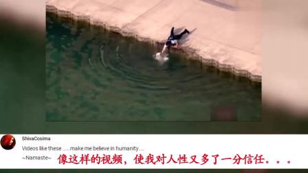 老外看中国交警拦车帮助老人过马路:看哭了,英雄就在我们身边