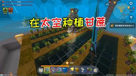 迷你世界光棍生存75:在太空种植甘蔗水稻,天才江也会翻车?