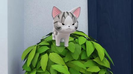 甜甜私房猫:小奇,你真棒,加油!