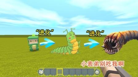 迷你世界:小表弟变成蛹虫,吃100只小虫后,能进化成死亡蠕虫