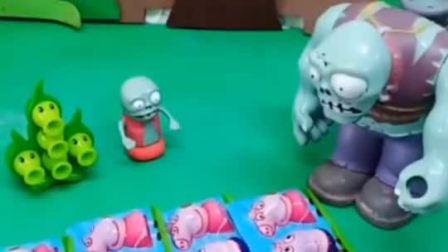 巨人僵尸是买了小猪佩奇巧克力,小鬼不愿意和豌豆射手分享,小鬼这样不对哦