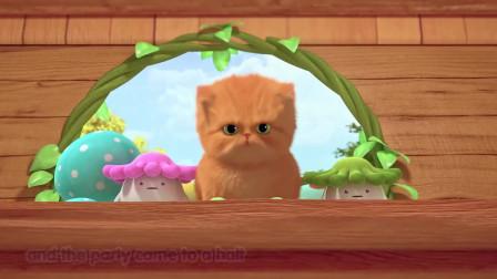 巴塔木流行儿歌:小猫猫们在做游戏,都好可爱呀,好想抱起来摸