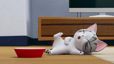 甜甜私房猫:小奇,你抱抱的哦