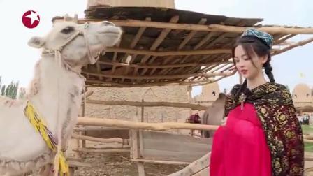 王迅、杨超越拍合照,杨超越被骆驼咬了,笑到想哭!