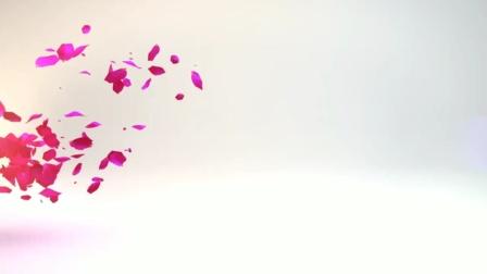 """在丹东市满族经济文化促进会举办的""""迎中秋 庆国庆""""大型演出中,梦之队艺术团表演:舞蹈 模特《心上的罗加》"""