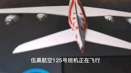 多多日空难:伍晨航空125号班机模拟空难