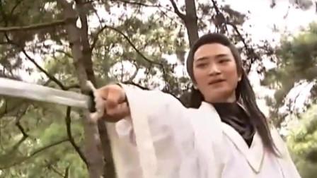 霹雳菩萨:少年真是个武学奇才,练了半天,就吊打顶尖高手!