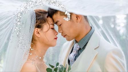 周奇发陈方圆新婚视频