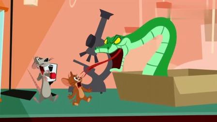 猫和老鼠:博士带回跳蛇,看起来真可怕,杰瑞小命不保!