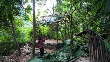 妹子丛林生存,打造可长期居住的庇护所,又高又宽敞!