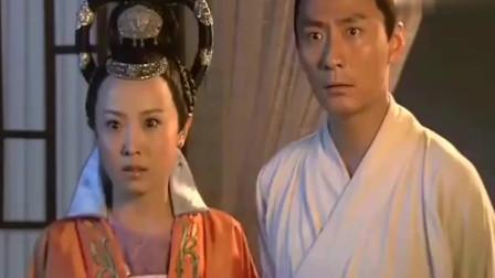 神探狄仁杰:狄仁杰对林永忠说:你就是薛青麟,如燕元芳惊了