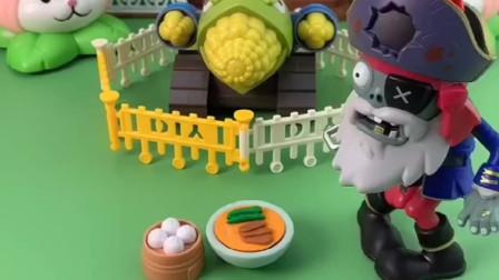 僵尸担心玉米炮饿坏了,好心送小猪包玉米炮还不要呢,要吃圆圆的