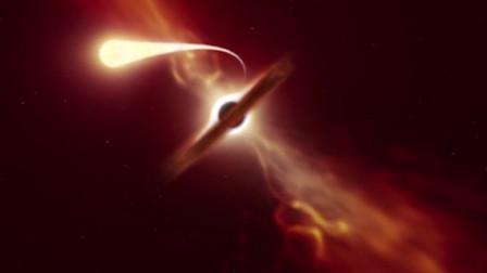 离地球最近一次!超大质量黑洞吞噬耀眼恒星 震撼全过程曝光