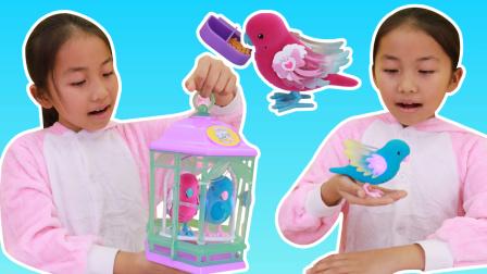 我的小宠,艾米儿带来了会发光唱歌的小鸟玩具
