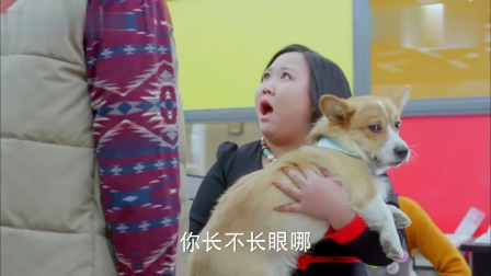 胖妞带狗狗给帅哥做造型,怎料一看价目表,胖妞竟被吓傻了