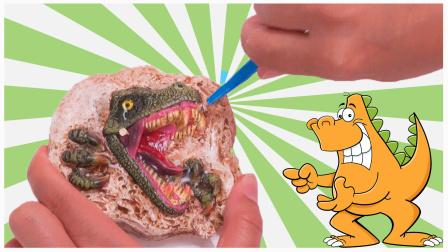 霸王龙考古玩具 挖出恐龙牙齿和便便化石