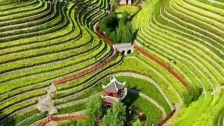 """贵州一古镇中间有一个人工梯田,形似大地的""""指纹""""!"""