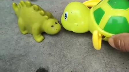 乌龟在找小乌龟,找了半天终于找到了,太开心了