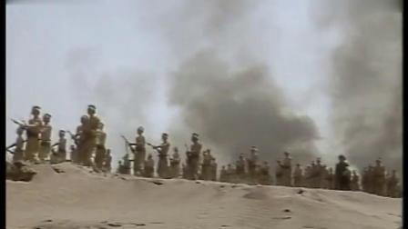 国军发起式冲锋,解放军几十门大炮齐轰,国军成片倒下!