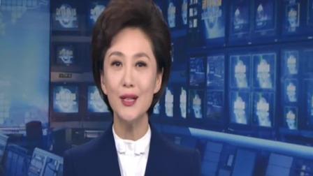 央视新闻联播 2020 人民日报任理轩文章:在危机中育新机 于变局中开新局