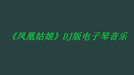 《凤凰姑娘》DJ版电子琴音乐