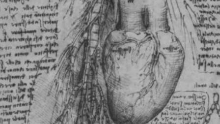 达芬奇曾画出心脏细微结构图,如今专家分析2.5万张图像才找到