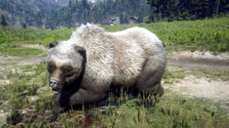 《荒野大镖客2》大灰熊突然向主人发起攻击,最后只好把它杀死