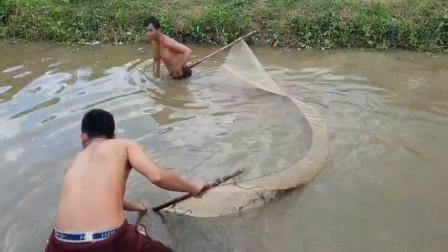 农村兄弟拉网捞鱼,这种网我们小时候也玩过,太好玩了