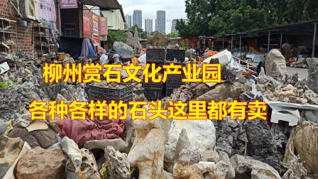 实拍广西柳州赏石文化产业园,各种各样的奇石都有卖,你来过吗?