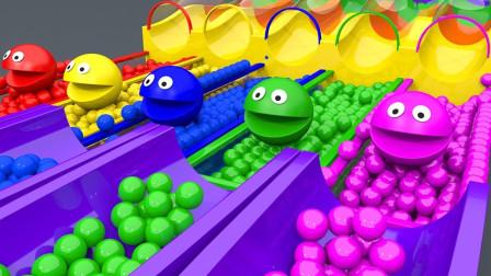 球球穿过彩色滑道,跳入豆豆池被染色益智学颜色